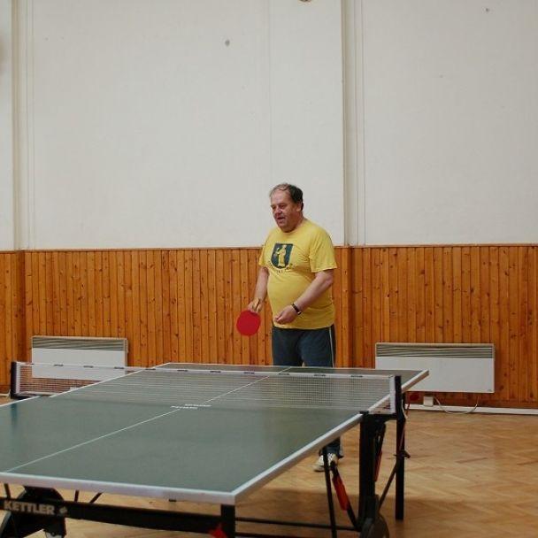 Stolný tenis (2007)