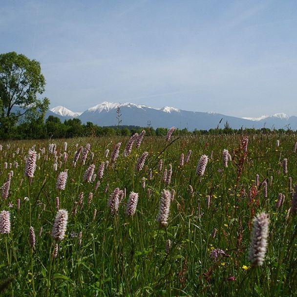 Malebná príroda a rozmanitá krajina