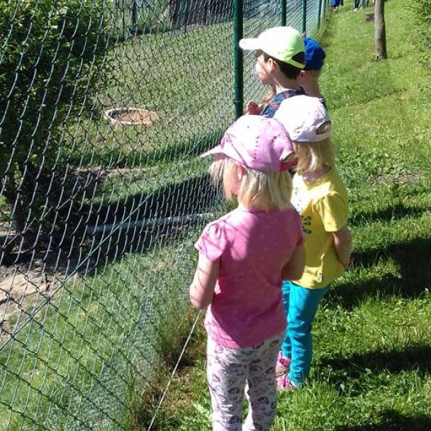 16.06.2021 - Motýliky - Výlet - Ukážková včelnica Majka